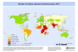 malariakart_2010