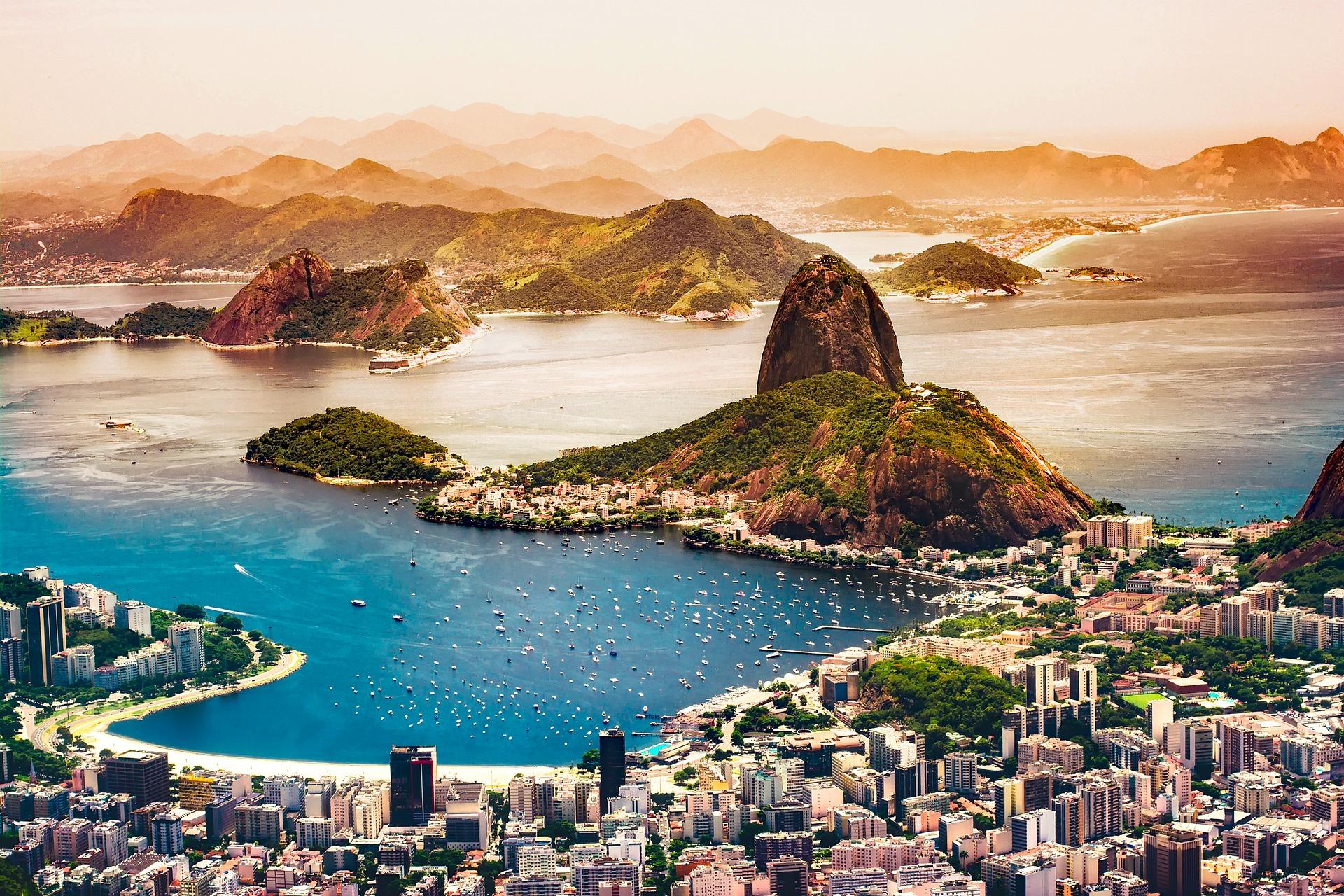Gulfeber Brasil