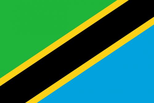bilde av det tanzanianske flagget
